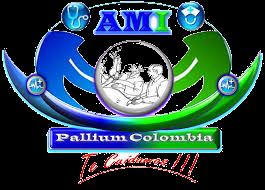 ami pallium colombia